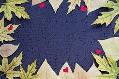 Decorazione di autunno - struttura delle foglie di giallo e dei cuori rossi su un fondo nero Copi lo spazio fotografie stock