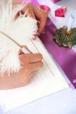 Decorazione di cerimonia nuziale Immagine Stock