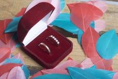 Decorazione di cerimonia nuziale Le fedi nuziali in scatola si trovano su una scatola di legno Sono spruzzati intorno con le pium Fotografia Stock Libera da Diritti