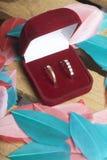 Decorazione di cerimonia nuziale Le fedi nuziali in scatola si trovano su una scatola di legno Sono spruzzati intorno con le pium Immagini Stock
