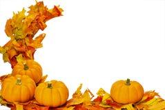 Decorazione di Halloween di ringraziamento di caduta isolata immagine stock libera da diritti