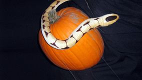 Decorazione di Halloween di un serpente e di una zucca Immagini Stock Libere da Diritti