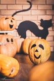Decorazione di Halloween in studio: zucche con i sorrisi, muro di mattoni Fotografia Stock Libera da Diritti