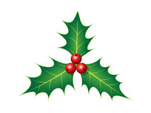 Decorazione di Holly Christmas Fotografie Stock