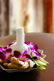 Decorazione di massaggio della stazione termale Immagini Stock