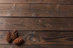 Decorazione di Natale: il pino fiorisce il cono Immagini Stock Libere da Diritti