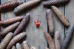 Decorazione di natale Invito di nuovo anno Idea di vacanze invernali Fotografie Stock Libere da Diritti