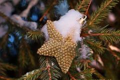 Decorazione di Natale sull'abete rosso Immagine Stock