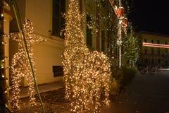Decorazione di Natale di Tirana immagine stock