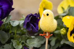 Decorazione di Pasqua Immagini Stock
