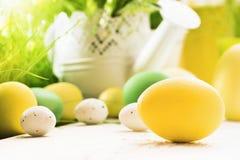 Decorazione di Pasqua con luce solare Immagine Stock