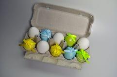 Decorazione di Pasqua - coniglietti di pasqua in una scatola di uova Fotografie Stock Libere da Diritti