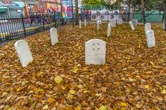 Decorazione di Ronde Halloween della La Fotografia Stock