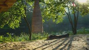 Decorazione di vimini nella foresta stock footage