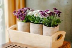 Decorazione domestica del fiore Immagini Stock Libere da Diritti