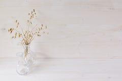 Decorazione domestica molle del vaso di vetro con le spighette su fondo di legno bianco fotografia stock libera da diritti