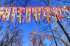 Decorazione festiva degli alberi con i nastri variopinti Immagine Stock