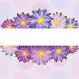 Decorazione floreale Fotografia Stock Libera da Diritti