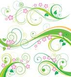Decorazione floreale della sorgente Fotografia Stock