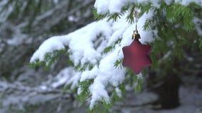 Decorazione a forma di stella di Natale che oscilla sull'albero di abete nevoso video d archivio