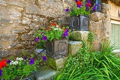 Decorazione graziosa dei fiori Fotografie Stock