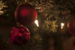 Decorazione rossa della palla dell'albero di Natale Fotografia Stock
