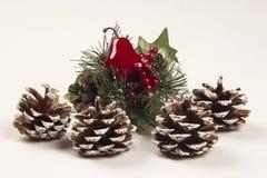 Decorazione Santa di Natale e scarpa della pigna Priorità bassa bianca Fotografia Stock Libera da Diritti