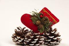 Decorazione Santa di Natale e scarpa della pigna Priorità bassa bianca Fotografie Stock
