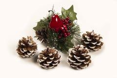 Decorazione Santa di Natale e scarpa della pigna Priorità bassa bianca Immagine Stock Libera da Diritti