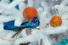 Decorazione stagionale del nuovo anno e di Natale su spirito dell'albero di abete bianco del Colorado Fotografia Stock