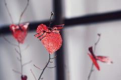 Decorazioni del biglietto di S Cuori rossi sui rami Fotografia Stock Libera da Diritti