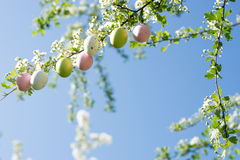 Decorazioni dell'uovo di Pasqua Fotografie Stock Libere da Diritti