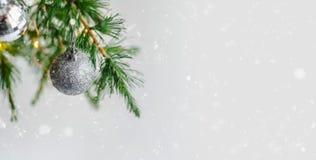 Decorazioni della composizione in Natale e rami di albero dell'abete delle ghirlande immagine stock