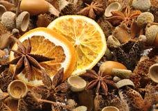 Decorazioni di autunno - frutta Fotografia Stock