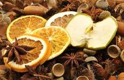 Decorazioni di autunno - frutta Immagini Stock