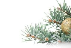 Decorazioni di natale con la filiale dell'albero su bianco Immagine Stock