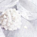 Decorazioni di Natale con la pigna bianca, le stelle d'argento ed il si Immagine Stock Libera da Diritti