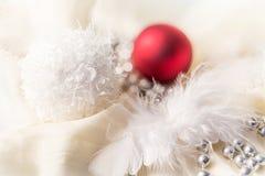 Decorazioni di Natale con la piuma Fotografia Stock Libera da Diritti