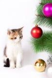 Decorazioni di Natale e del gattino Fotografia Stock Libera da Diritti