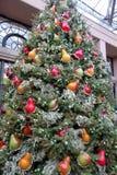 Decorazioni di Natale nelle serre dei giardini di Longwood Immagine Stock