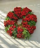 Decorazioni di Natale nelle serre dei giardini di Longwood Fotografie Stock Libere da Diritti
