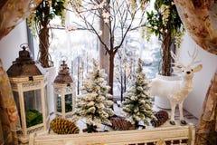 Decorazioni di Natale sul davanzale di inverno Fotografia Stock
