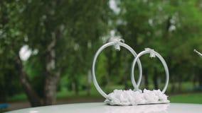 Decorazioni e paesaggio di nozze in anelli dorati di vista archivi video