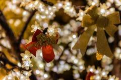 Decorazioni luminose di festa di Buon Natale Fotografie Stock