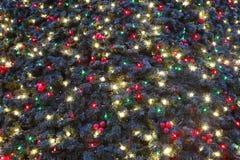 Decorazioni su un albero di Natale Fotografia Stock Libera da Diritti