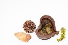 Decorazioni vittoriane di natale Pigna e berrie di natura morta immagine stock