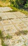 Decors of ancient Roman villas, El Djem Royalty Free Stock Photography