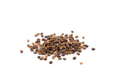Decorticated cardamom seeds Stock Image