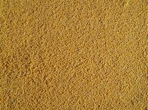 Decorticated organic millet grains. Food background stock photography