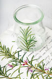 Decoupage vase with rosemary Stock Images